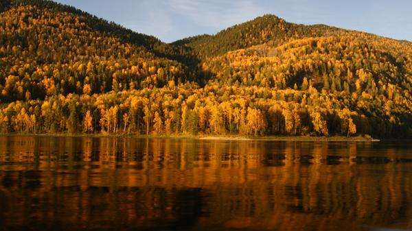 Ўкачать золотое озеро торрент