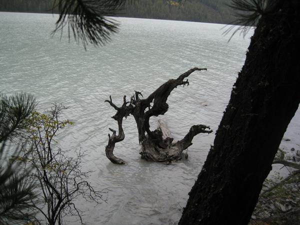 Призраки Кучерлинского озера 1
