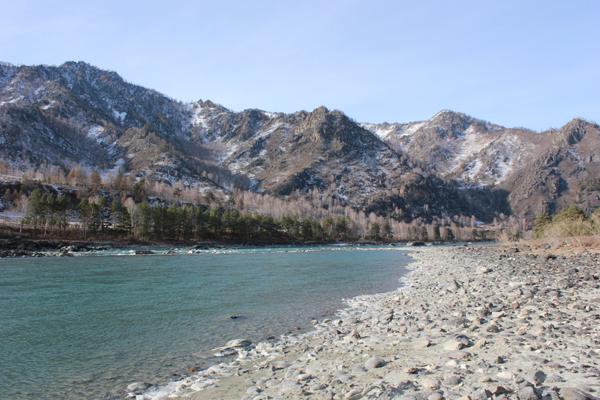 Река Катунь Чемальский тракт