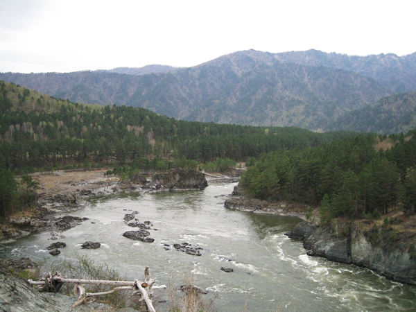 Чемал подвесной мост через Катунь